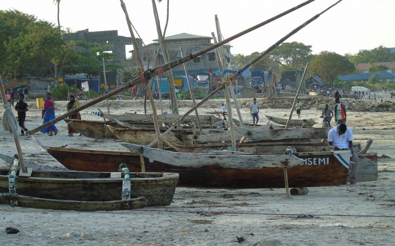 Dhows on the beach