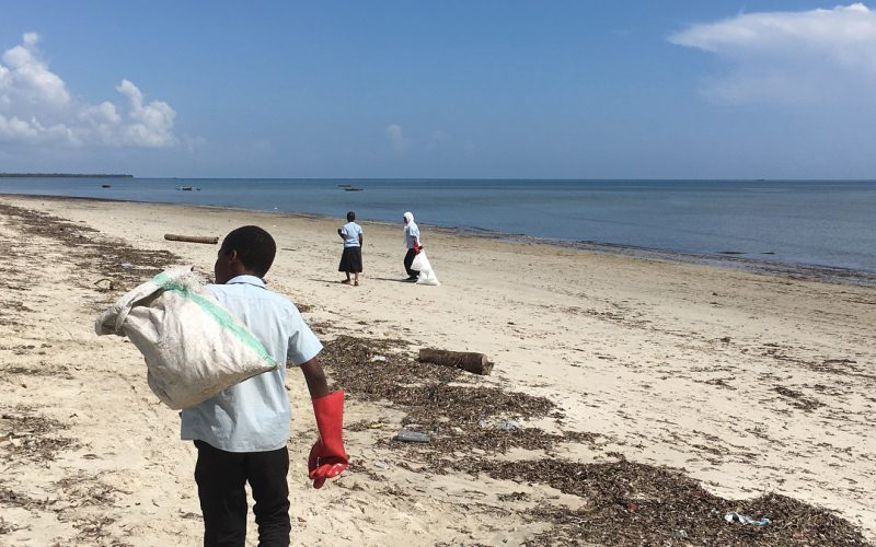 Student volunteers cleaning beach